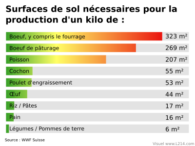 surfaces-de-sol-necessaires-production.kilo.png