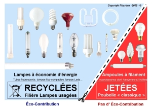 recyclage-lampes-300px.jpg